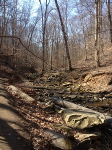 Creek at Potomac Overlook Park.